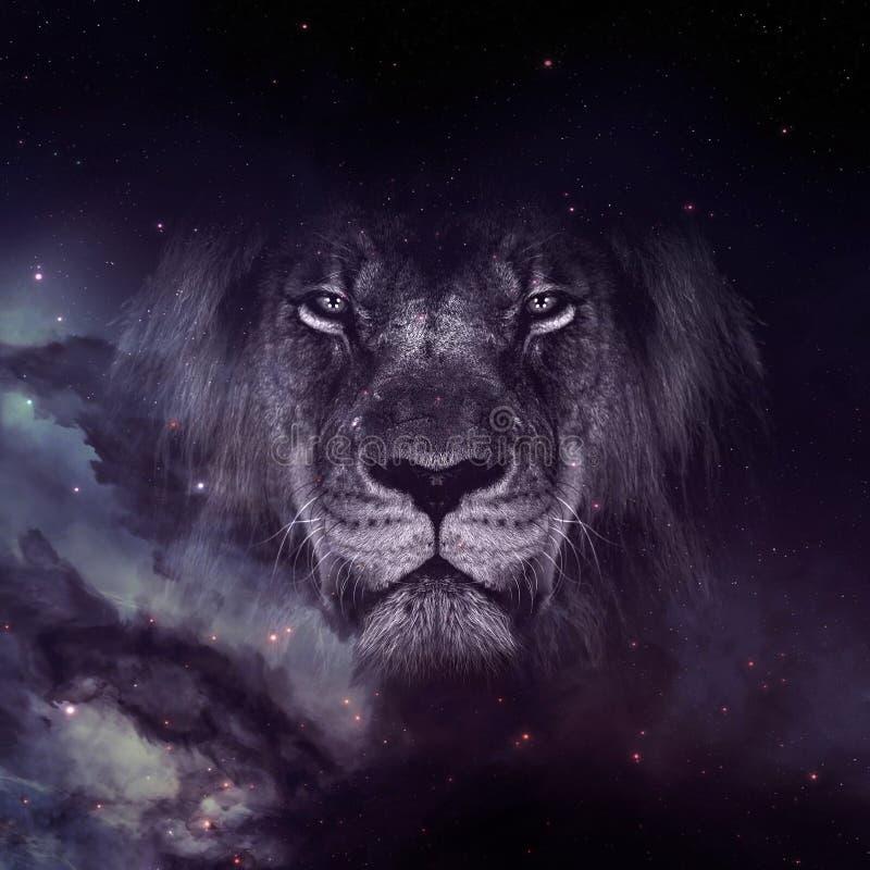 Lew twarz na galaxy tapecie zdjęcie stock