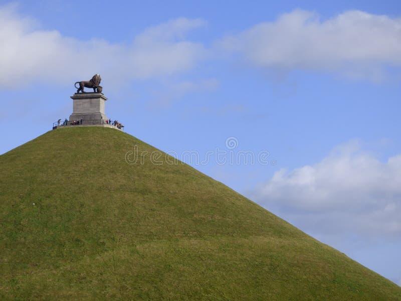 Lew Waterloo obraz royalty free