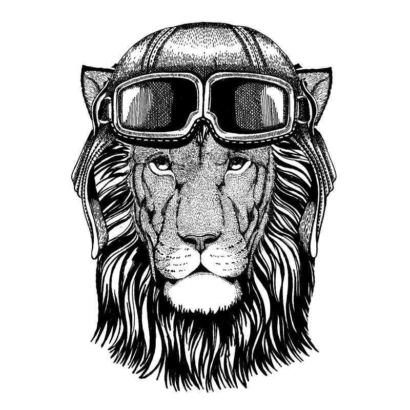 lew zwierząt na dziki drapieżne Zwierzęcy jest ubranym lotnika hełm z szkłami target1888_0_ polowania labiryntu obrazka węża wekt royalty ilustracja
