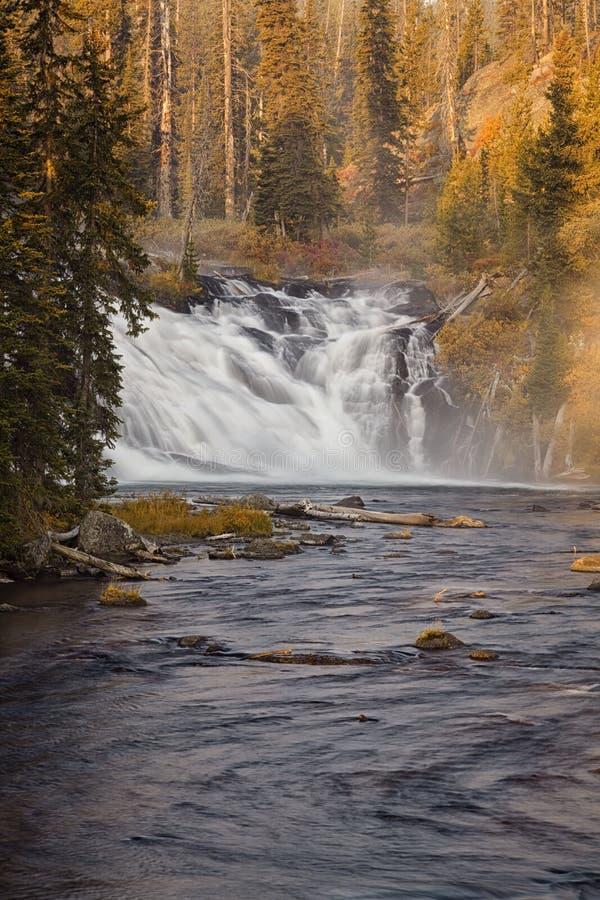 Lewis Falls - Yellowstone National Park royalty free stock image