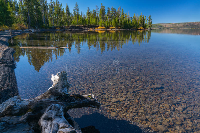 Lewis Lake Wyoming arkivfoto