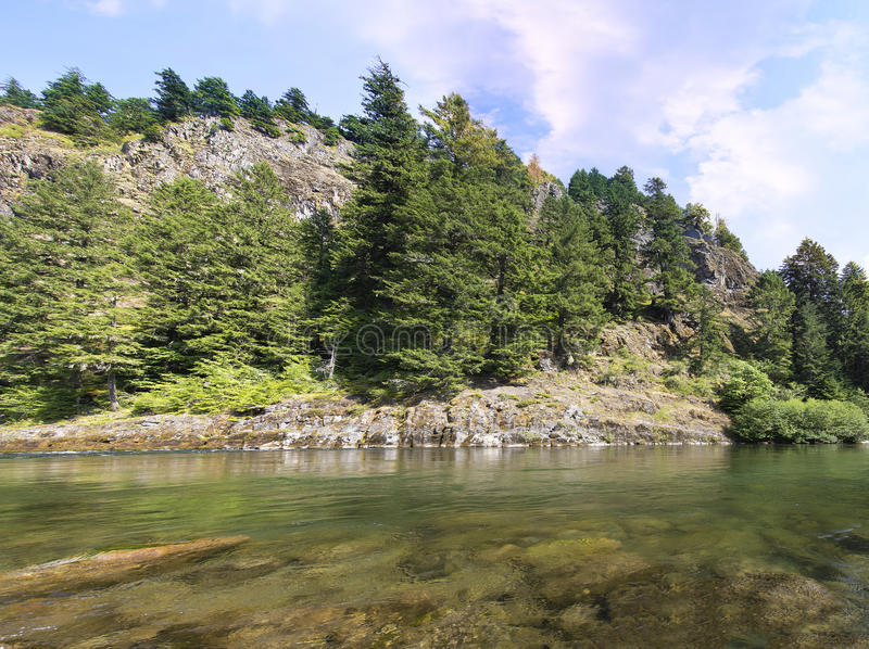 Lewis River Landscape fotos de stock royalty free