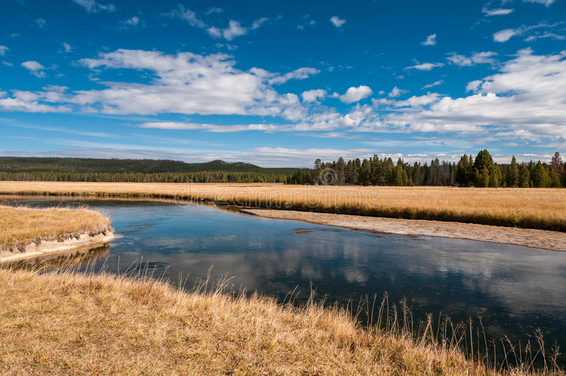 Lewis River no parque nacional de Yellowstone fotografia de stock royalty free