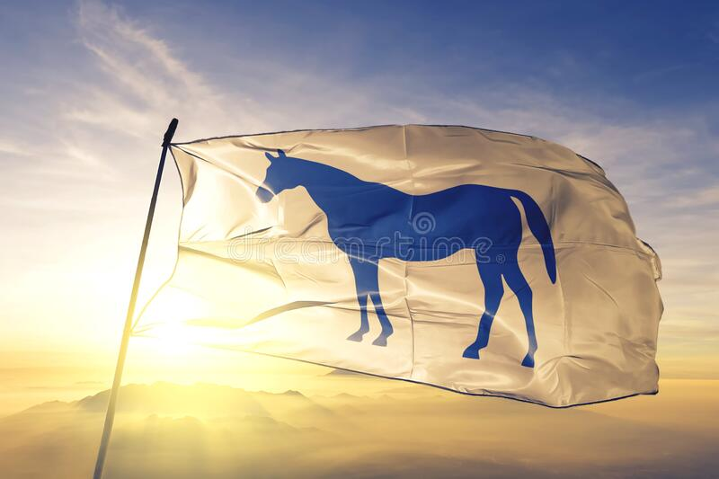 Lexington of Kentucky of United States flag waving on the top. Lexington of Kentucky of United States flag waving stock photo