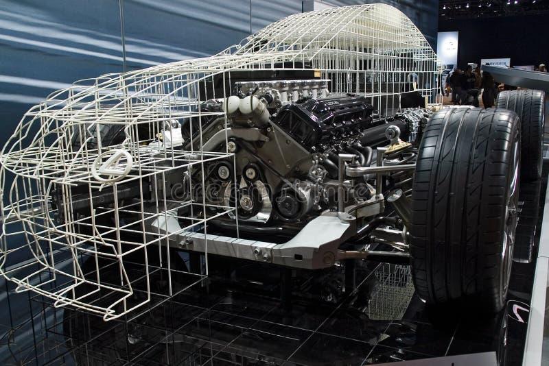 Lexus Baumuster stockfoto