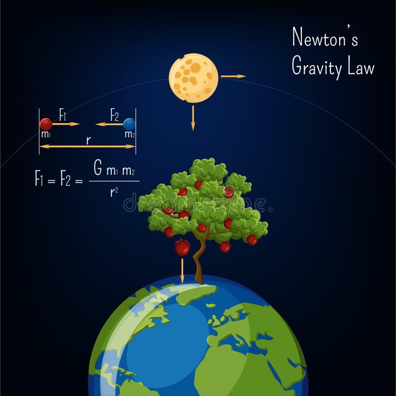 Ley de la gravedad del ` s de Newton infographic con el globo de la tierra, la luna, el manzano y el diagrama básico ilustración del vector