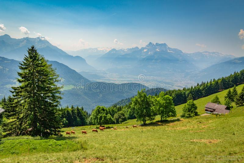 Leysin Alps. While walking around and enjoying the beautiful views of the alps in a hot sunny day I decided to take this shot as it was breathtaking. You can see stock photos