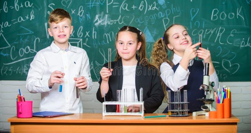 Lezione di chimica della scuola Provette con le sostanze variopinte Laboratorio della scuola Gli allievi della scuola del gruppo  fotografia stock libera da diritti