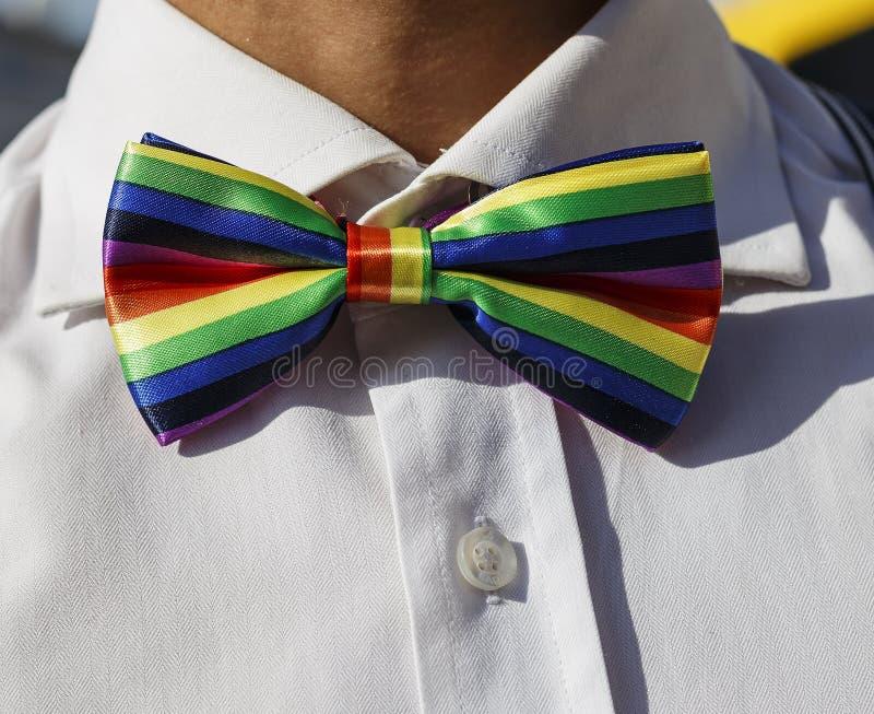 LGBT弓领带 库存图片