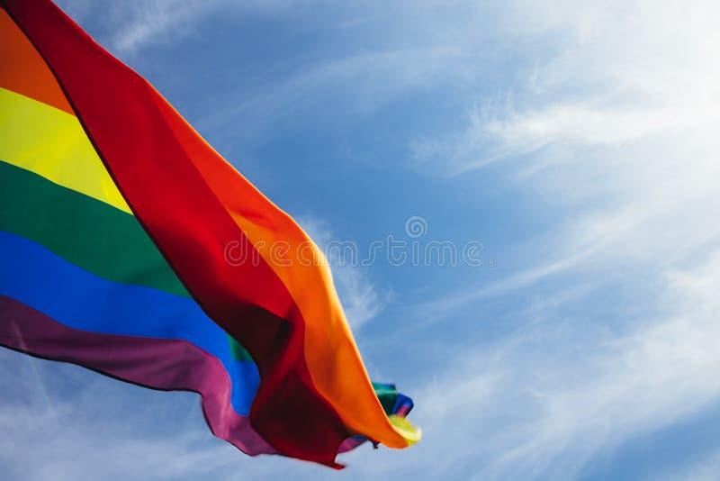 LGBT-flagga royaltyfri bild
