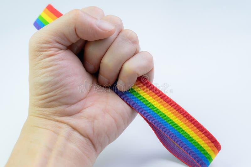 LGBT-het concept van de trotsviering, de regenbooghoofdband van de handholding op witte achtergrond, transsexueel, vrolijk of les stock foto