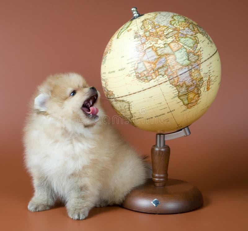 Lição da geografia fotografia de stock