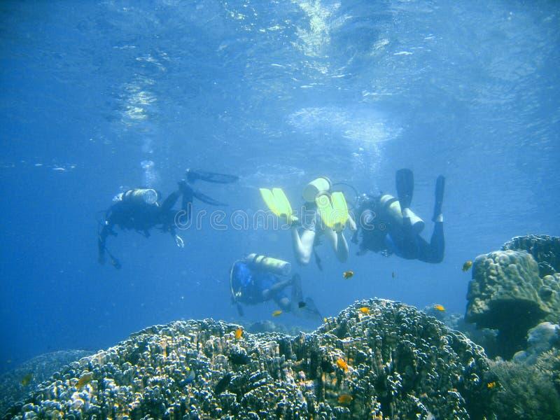 Lição de grupo do mergulhador do mergulhador foto de stock