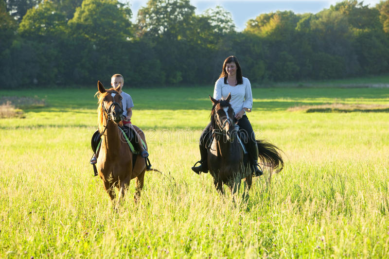 Lições de equitação foto de stock