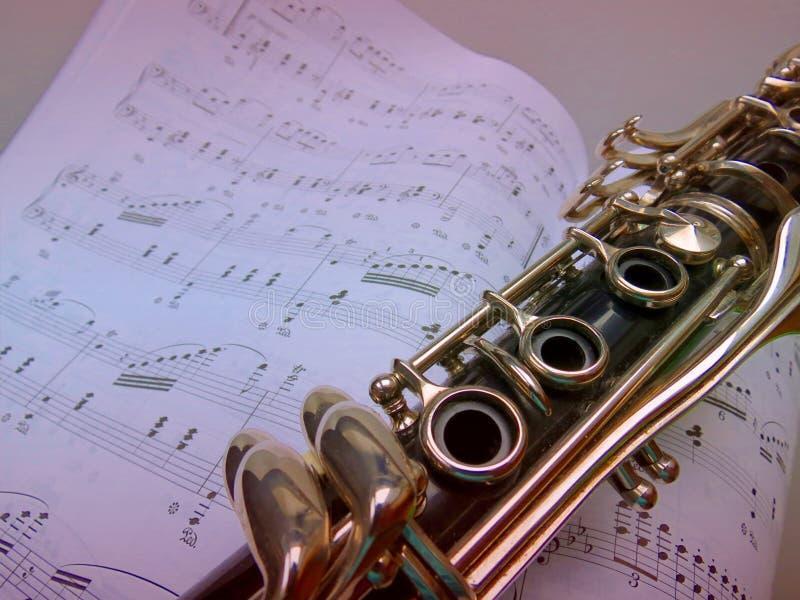 Lições de música no clarinete fotografia de stock royalty free