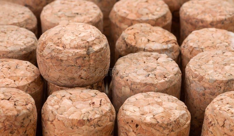 Liège de champagne comme fond photos libres de droits