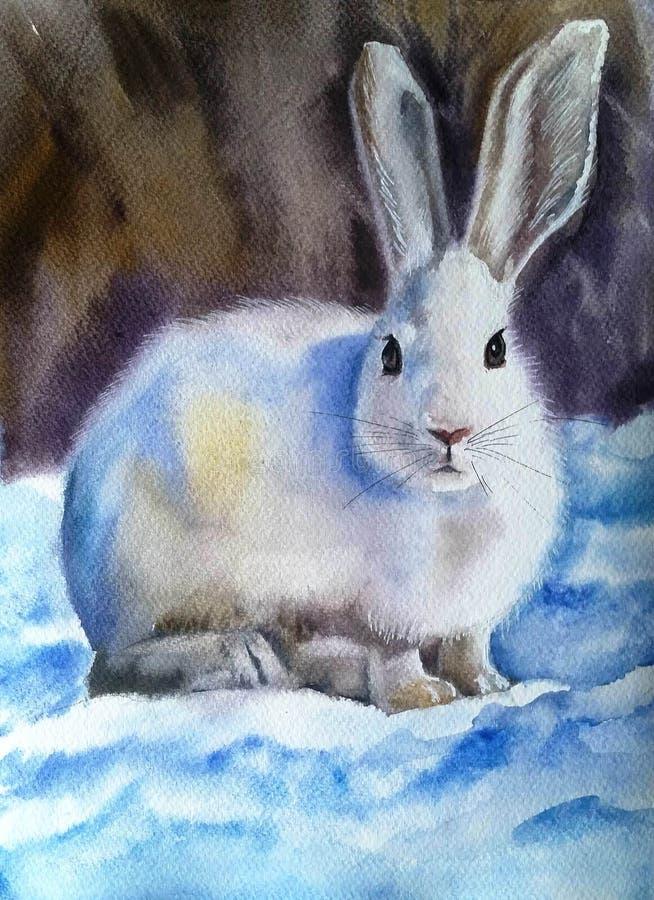Lièvres blancs avec des oreilles de position illustration libre de droits
