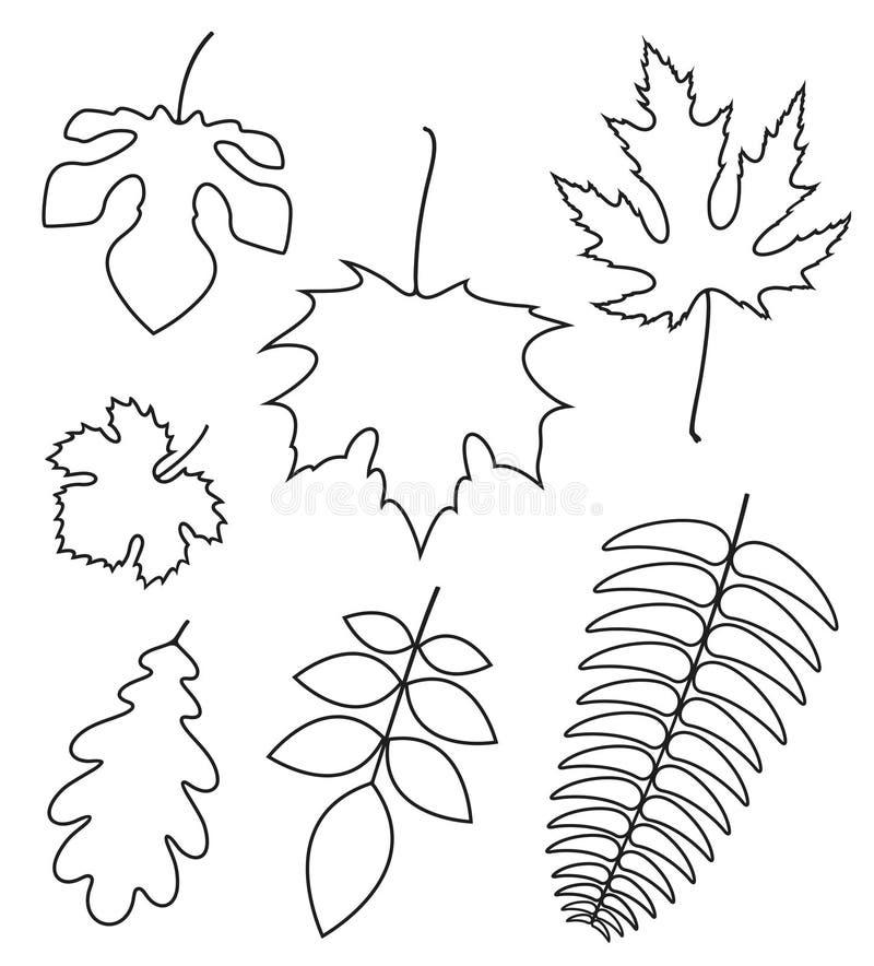 liść abstrakcyjne kontur ilustracji