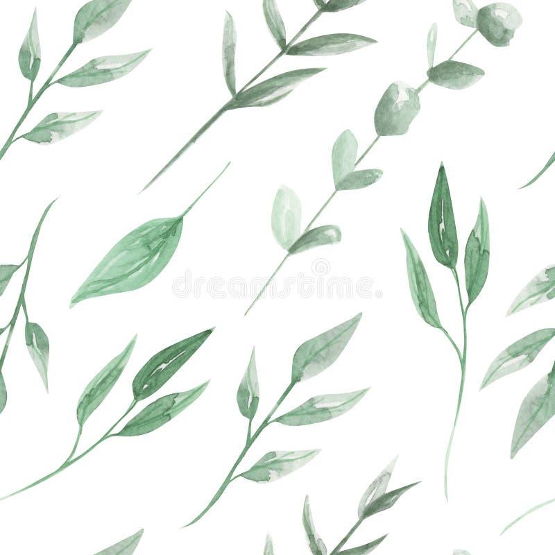 Liść akwareli wzoru zieleni Bezszwowy liść Malujący ilustracji