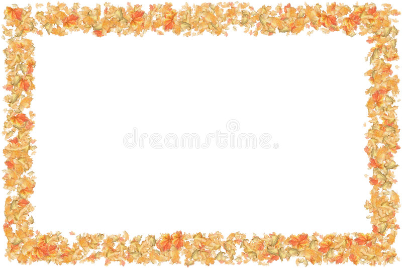 liść graniczny zdjęcie royalty free