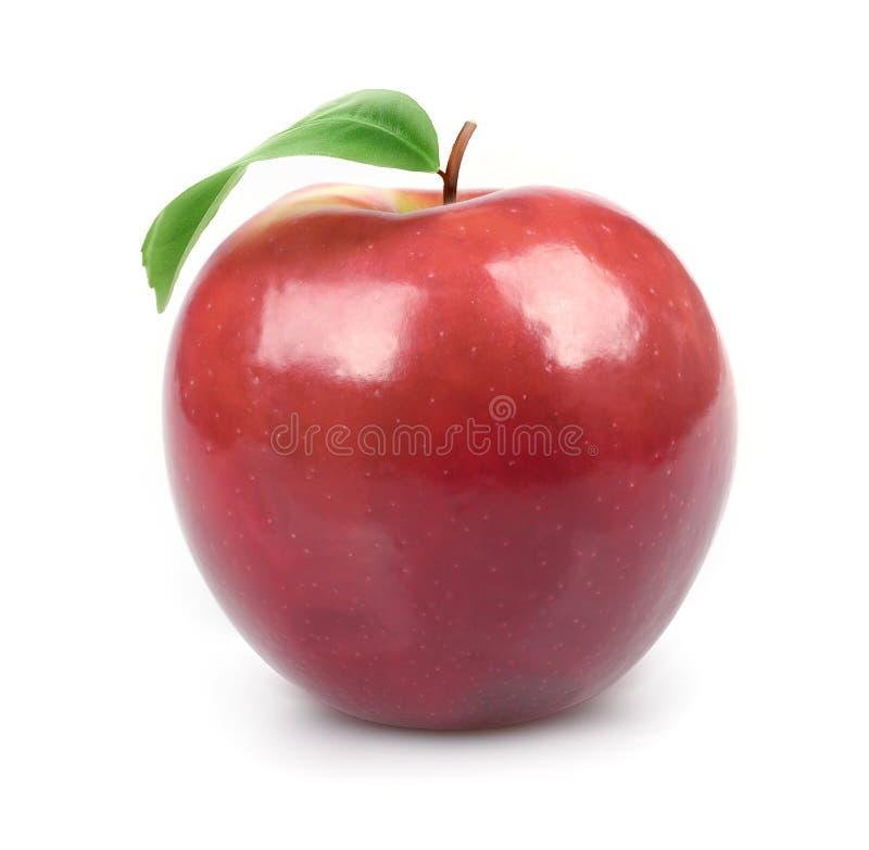 liść jabłczana świeża zielona soczysta czerwień obraz stock