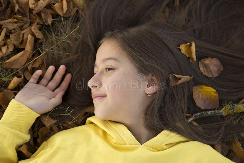 Kolorowy liść jesienny obrazy royalty free
