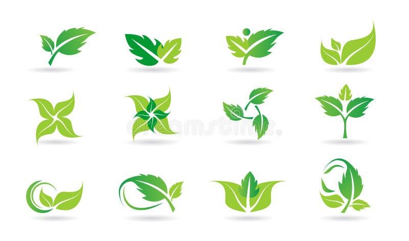 Liść, logo, roślina, ekologia, ludzie, wellness, zieleń, liście, natura symbolu ikona ustawiająca wektorowy ikona set ilustracji