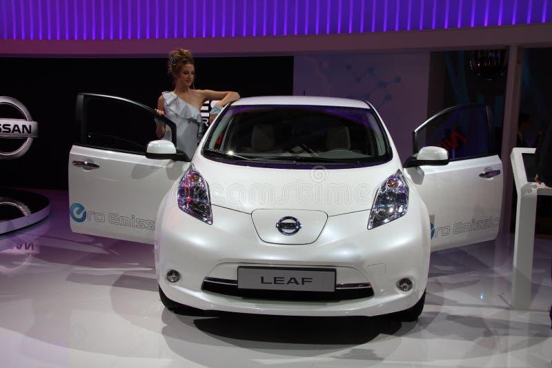 liść Nissan obraz royalty free