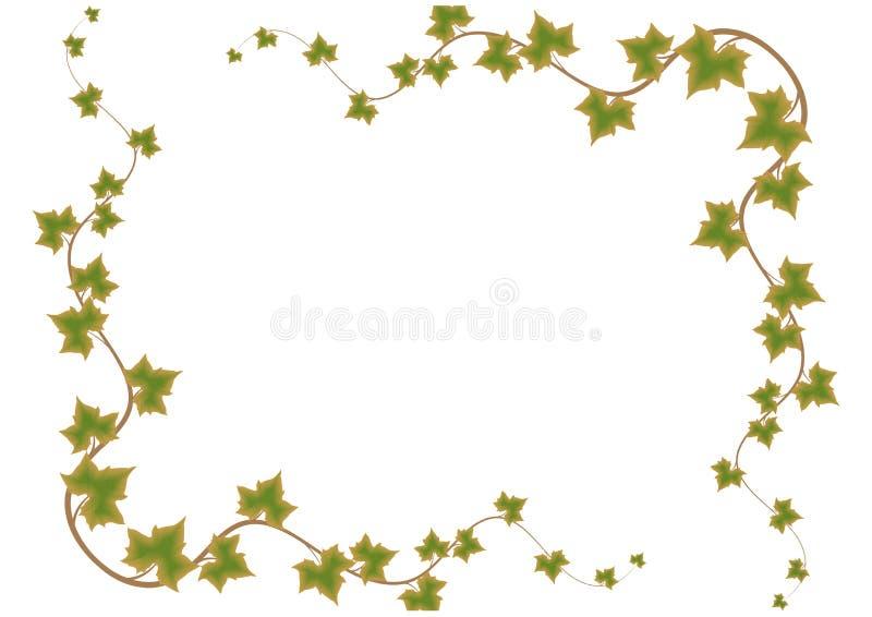 liść ramowy zielony wektor ilustracji