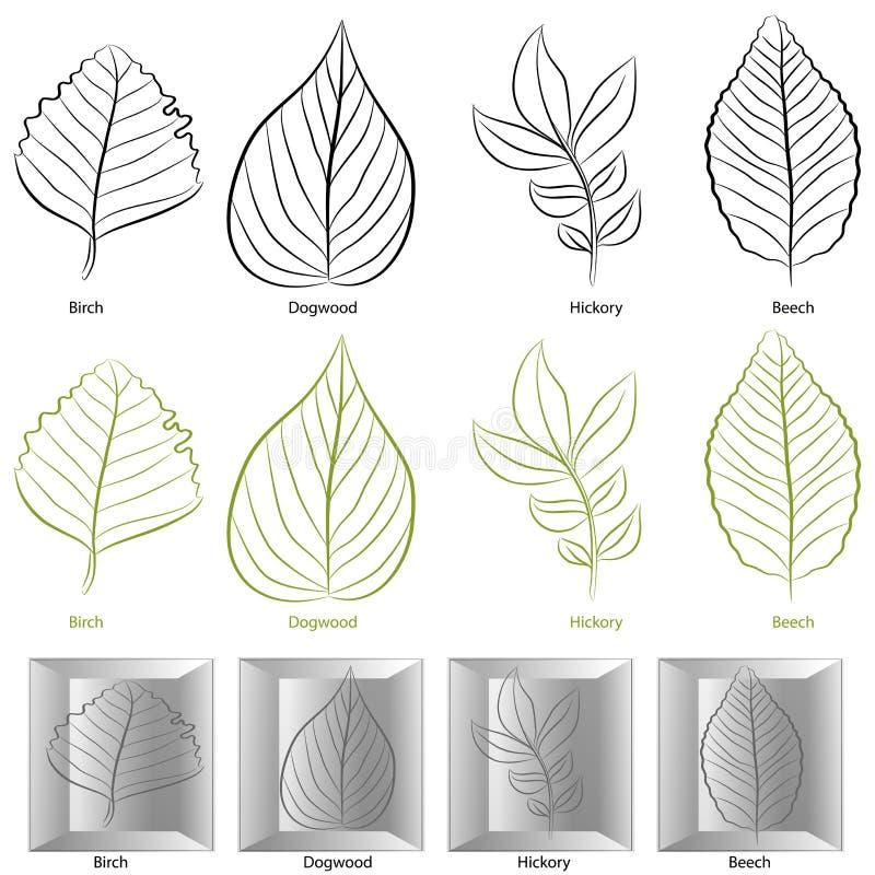 liść typ ustalony drzewny royalty ilustracja