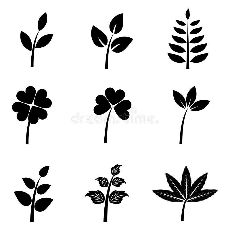 liść ustawiają sylwetki ilustracja wektor