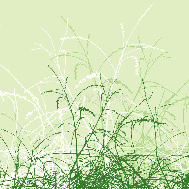 liści ilustracja wektor