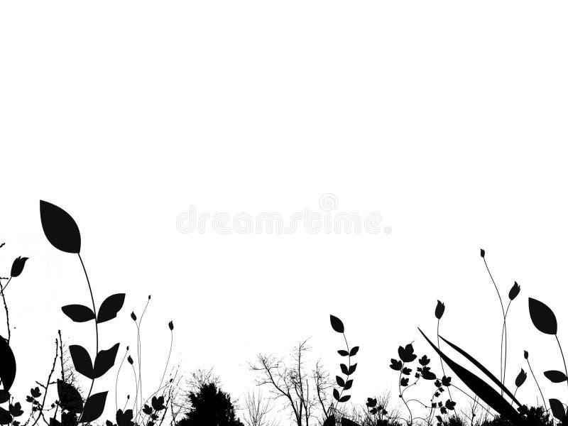 liści graniczny lato ilustracja wektor