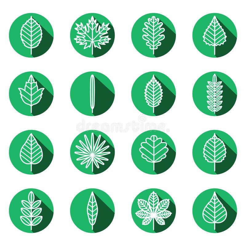 Liści typ zielony ikona wektoru set Nowożytny płaski projekt ilustracji