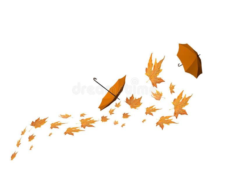 Liści ubrellas jesieni tła wiatru żółty kolor ilustracja wektor