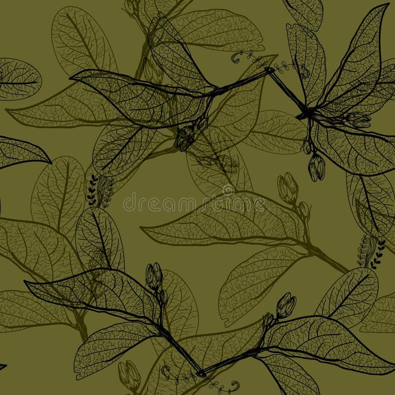Liścia czerni kontury na ciemnym oliwnym ciemnym khakim zielonym tle ilustracja wektor