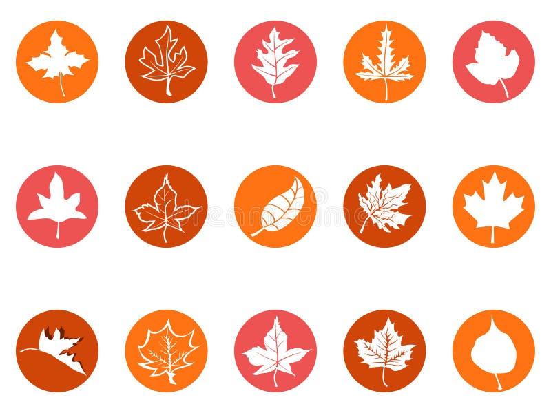 Liścia klonowego guzika round ikony ilustracji