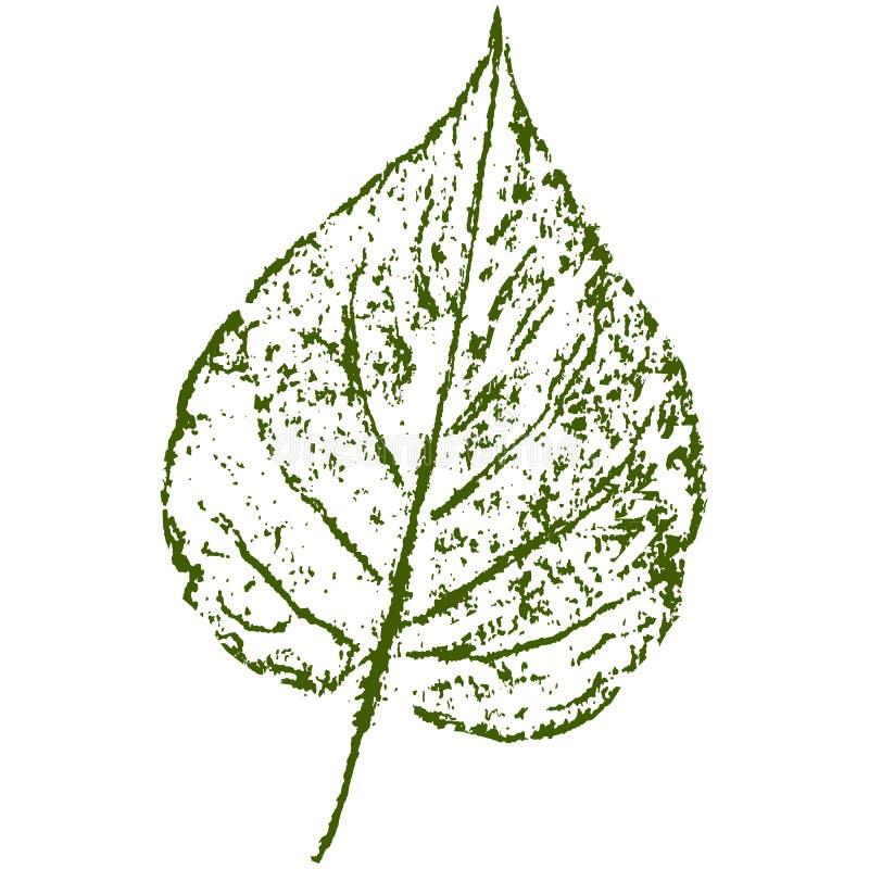 Liścia odcisk, szkotowy druk zdjęcie stock