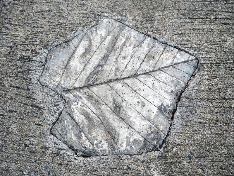 Liścia odcisku betonu przejście zdjęcie royalty free