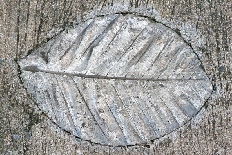 Liścia odcisku betonu przejście w miasto parku obrazy royalty free