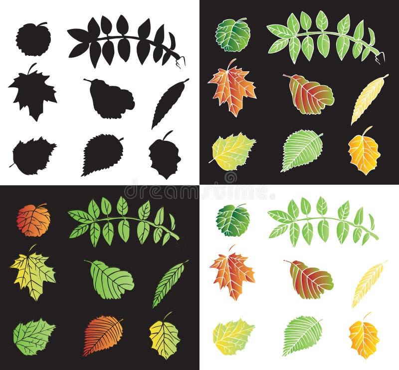 Liście drzewo kolor i sylwetki ilustracja wektor