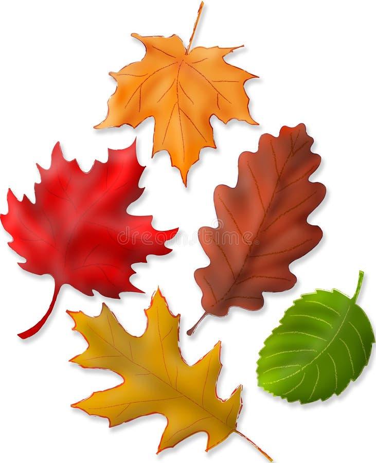liście jesienią ilustracja wektor