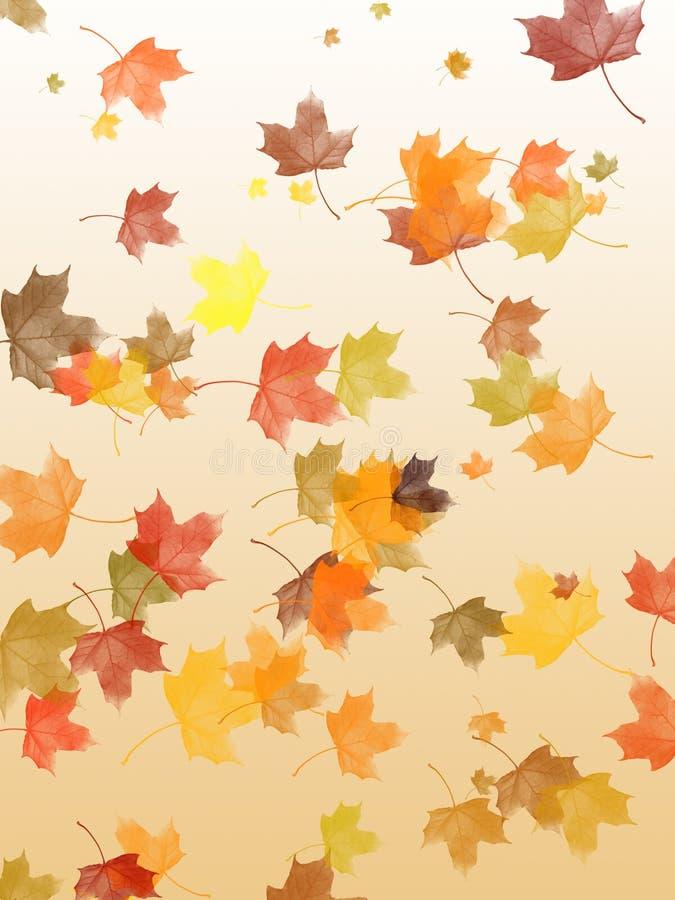 liście klonowi spada ilustracja wektor
