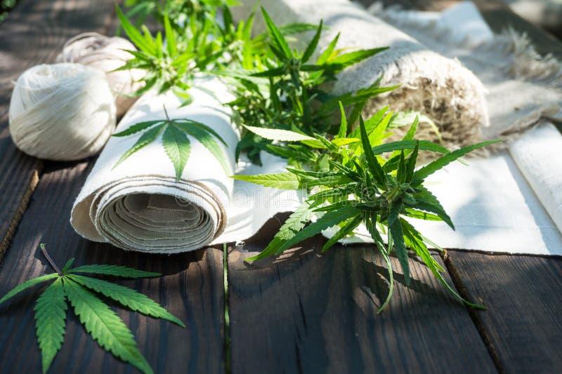 Liście marihuany i konopie sukienny rollon ciemna drewniana powierzchnia fotografia stock