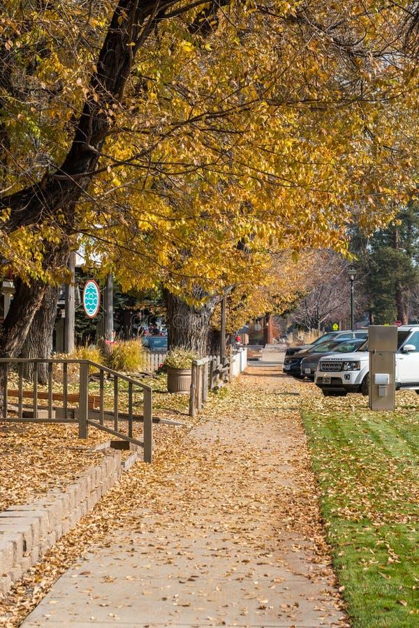 Liście spadły z drzew spadając na chodnik ulicy Cascade w Sisters, Oregon, USA obrazy stock