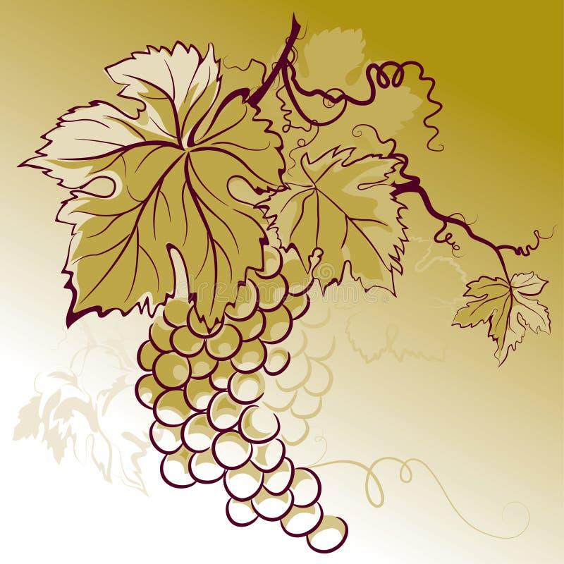 liście winogron ilustracja wektor