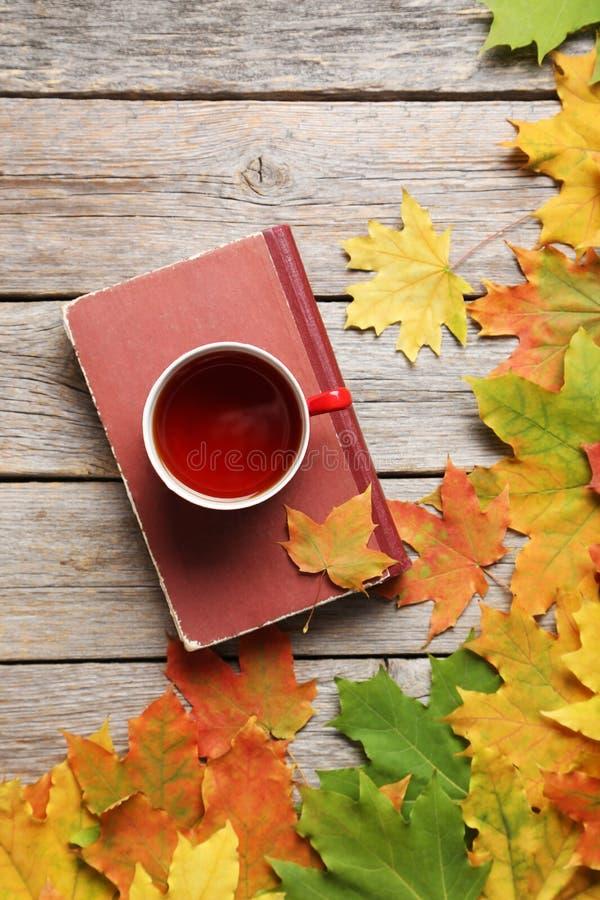 Liście z filiżanką herbata fotografia royalty free