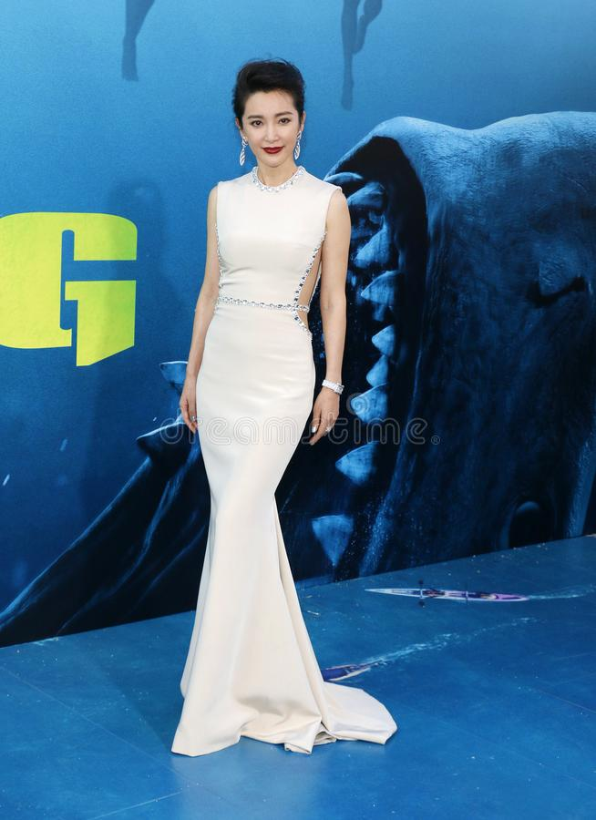 Li Bingbing lizenzfreies stockfoto