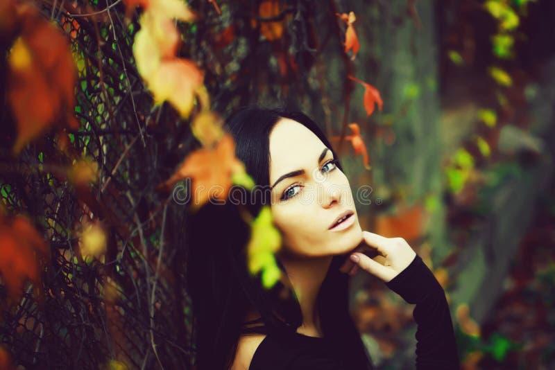 li?ci jesieni? kobieta obrazy stock