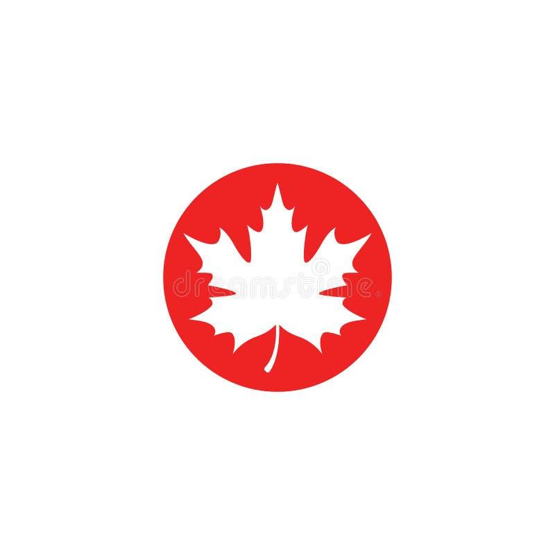 Li?cia klonowego logo szablonu ikony wektorowa ilustracja ilustracji